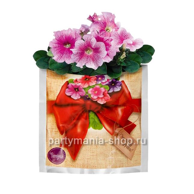 Растущая трава «Петуния» в подарочном пакете