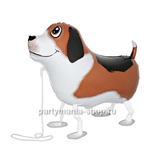 «Собака»  фигурный шар с гелием
