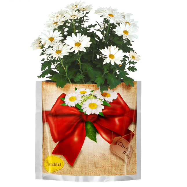 Растущая трава «Ромашка» в подарочном пакете