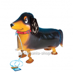 «Такса»  фигурный шар с гелием